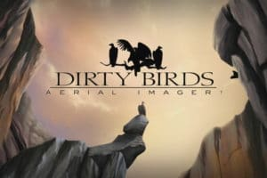 Dirty Birds Blog TN
